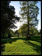 Landscape Photography By Artist Paul Milton Artist B.A.Honours Copyright (c)